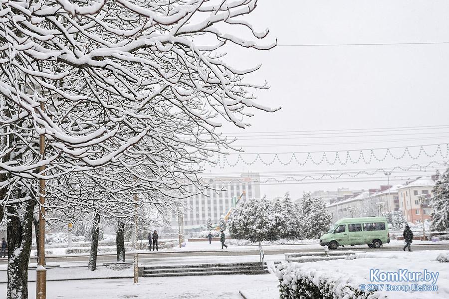 Бобруйск накрыло снегом