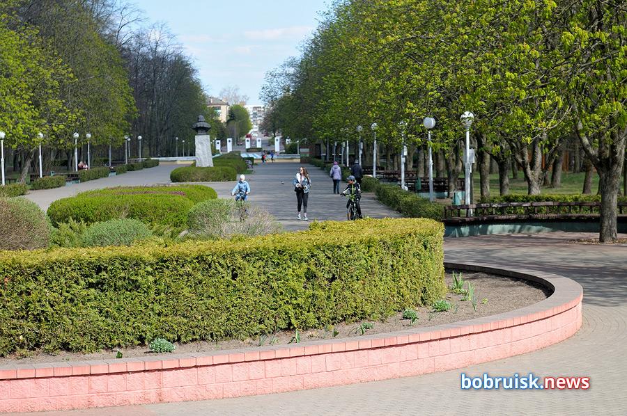 этих направлений фото парк бобруйск можете