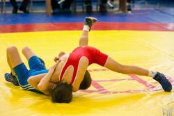 Юниор из Бобруйска достойно выступил на международном турнире по греко-римской борьбе