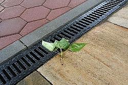 «Коммерческий» на связи: Будет ли канализация?