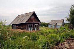 «Коммерческий» на связи: как навести порядок на даче?