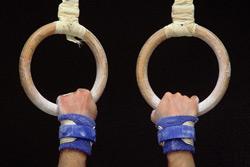 Медальный вояж бобруйских гимнастов