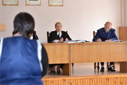 В Бобруйске осудили женщину по «драгоценной» статье