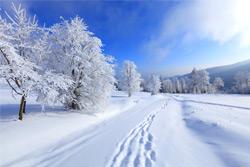 По готовности к зиме Бобруйск опережает область
