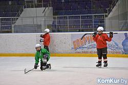 «Бобруйск-Арена»: год без большого хоккея