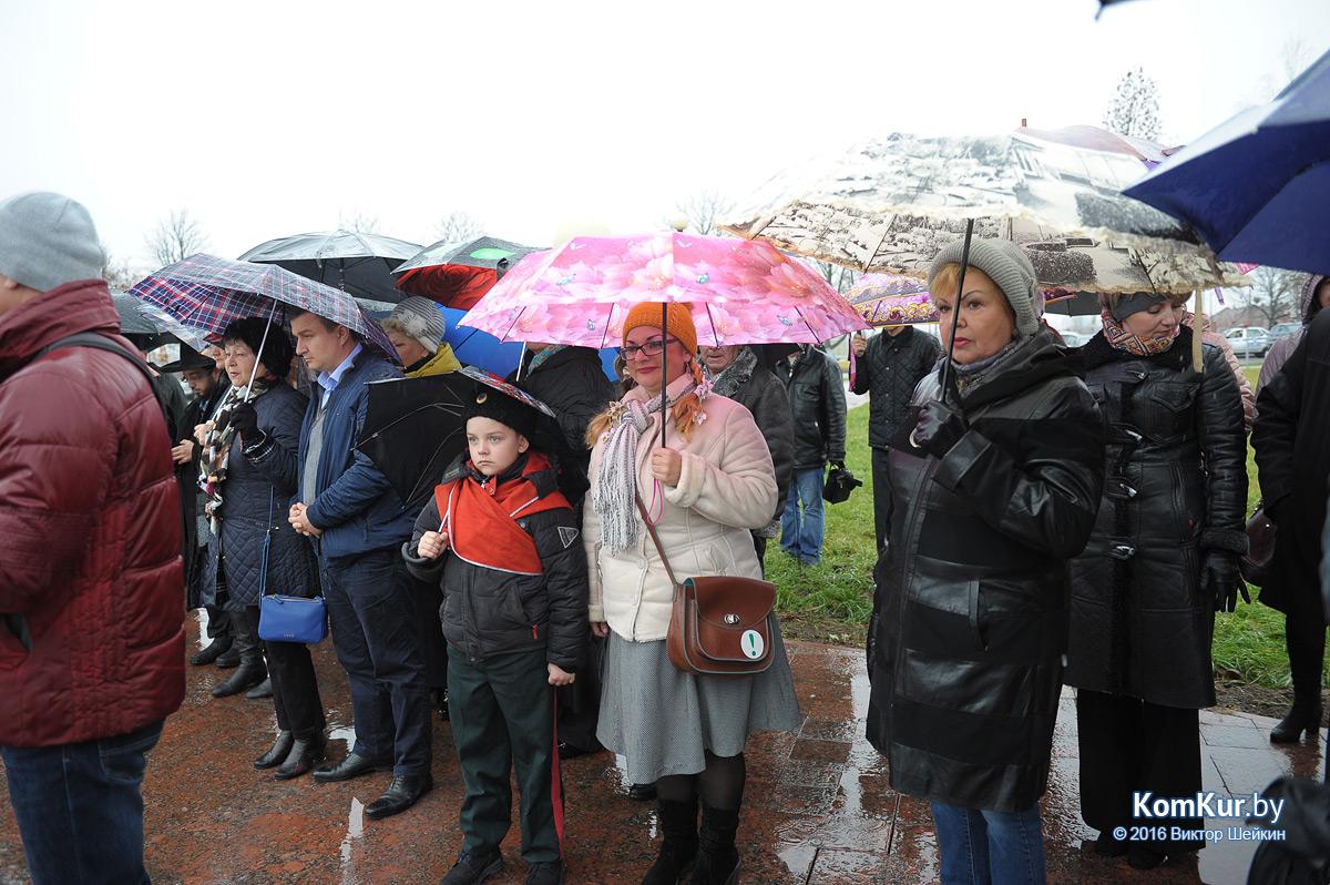 Бобруйск отмечает День Октябрьской революции