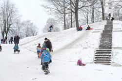 Зимняя погода вернется в Беларусь на следующей неделе