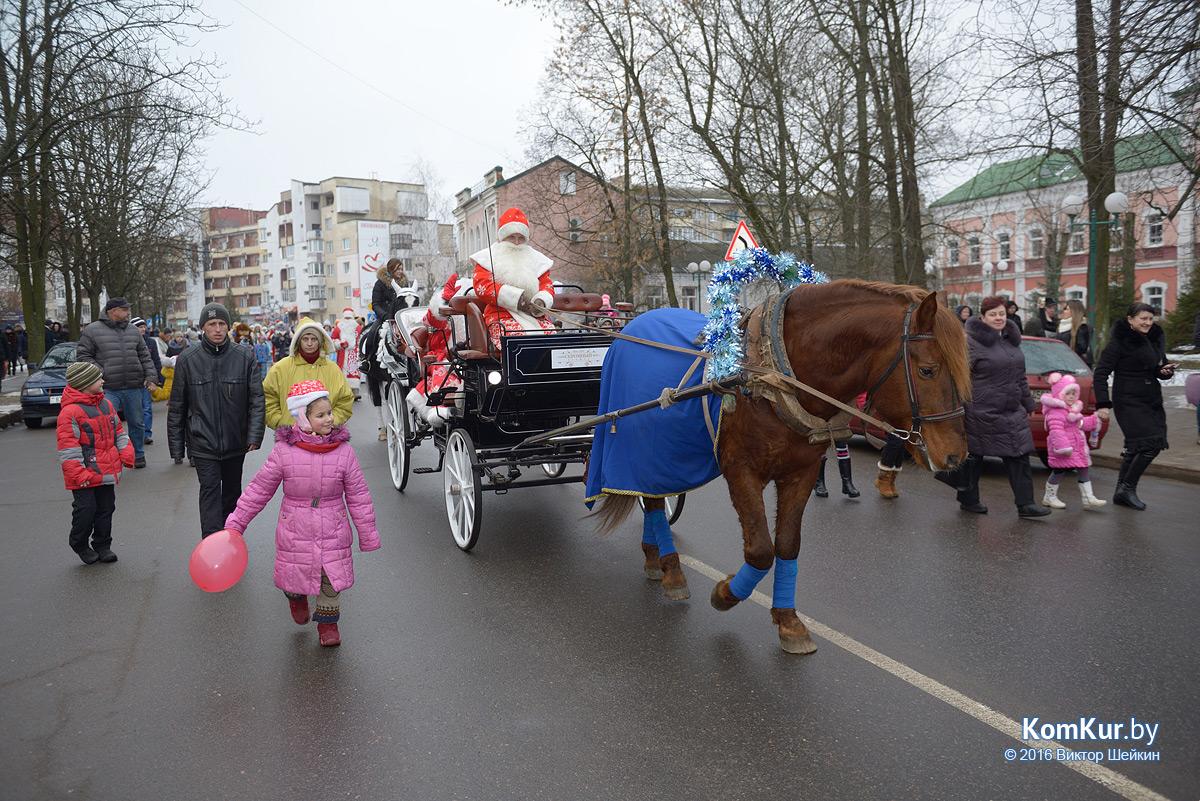 В Бобруйске прошло праздничное шествие Дедов Морозов
