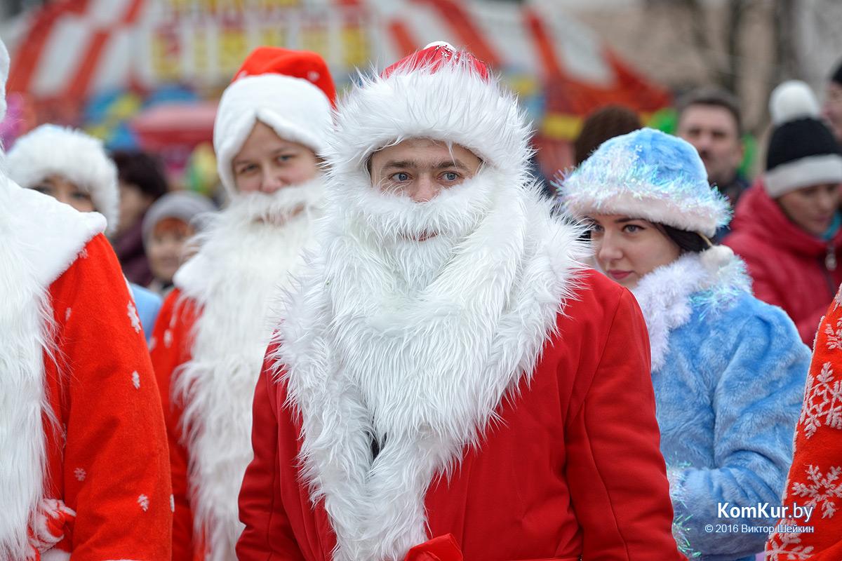 В Бобруйске прошло праздничное шествие Дедов Морозов и других сказочных персонажей