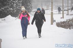 На смену сильным морозам придут снег, порывистый ветер и метели