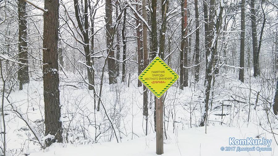 Белый камуфляж на полигоне под Бобруйском