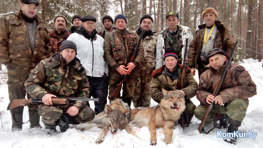 Всего в этом году было добыто девять волков