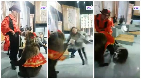 Медведица ударила девушку, которая протянула к ней руку. Зверь с легкостью повалил жертву на пол.