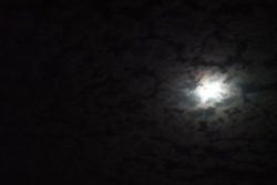 Лунное затмение в Бобруйске